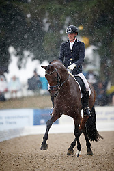 Van Silfhout Diederick, (NED), Expression 4<br /> First Qualifier 6 years old horses<br /> World Championship Young Dressage Horses - Verden 2015<br /> © Hippo Foto - Dirk Caremans<br /> 07/08/15