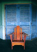 Goldeneye Detail - Painted Chair