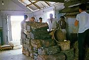 Inside merchant shop selling blocks of latex rubber and anaconda snake skins, Floating City, Manaus, Brazil 1962