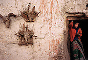 Totem protector skulls adorn the outside of a house.<br />Kingdom of Mustang, Nepal.