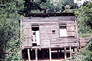 Wooden hut on cocoa farm with woman standing in doorway, Trinidad and Tobago 1961-1963