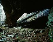 Alum Cove Natural Bridge, 130 foot long natural arch, Alum Cove Geologic Area, Ozark National Forest, Arkansas.