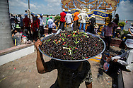 A street vendor sells insects along the riverside during the Water Festival in Phnom Penh, Cambodia, Southeast Asia