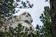 Washington carved into Mount Rushmore National Memorial, Keystone, South Dakota, USA. Sculptor Gutzon Borglum designed and oversaw the project 1927–1941, with help from his son, Lincoln Borglum. Mount Rushmore features 60-foot sculptures of the heads of four United States presidents: George Washington (1732–1799), Thomas Jefferson (1743–1826), Theodore Roosevelt (1858–1919), and Abraham Lincoln (1809–1865). South Dakota historian Doane Robinson conceived the idea of carving the likenesses of famous people into the Black Hills in order to promote tourism. Robinson's initial idea of sculpting the Needles was rejected by Gutzon Borglum due to poor granite quality and strong opposition from Native American groups. They settled on Mount Rushmore, and Borglum decided on the four presidents. Each president was originally to be depicted from head to waist, but lack of funding ended construction in late October 1941. Mount Rushmore is a batholith (massive intrusive igneous rock) rising to 5725 feet elevation in the Black Hills.