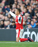 Arsenal's Alexis Sanchez looks on dejected during the Premier League match at the Emirates Stadium, London. Picture date October 26th, 2016 Pic David Klein/Sportimage
