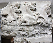 Detail from the South Frieze of the Parthenon, Athens. Showing 6 horsemen and their horses. Greek, circa 443-438 BC