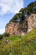 rock wall of the Stenzelberg mountain in the Siebengebirge hill range near Koenigswinter, the mountain served as a quarry for quartz latite until the 1930s, North Rhine-Westphalia, Germany.<br /> <br /> Felswand des Stenzelberg im Siebengebirge bei Koenigswinter, der Berg diente bis in die 1930er Jahre als Steinbruch fuer Quarz-Latit, Nordrhein-Westfalen, Deutschland.