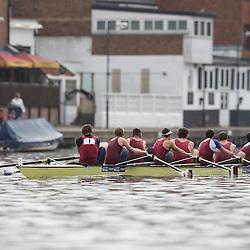 2012-03-10 Kingston Head 2012