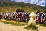 The Cardrona bra fence (Bradrona) supporting breast cancer, Otago, South Island, New Zealand