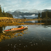 Tenakee Inlet penetrates deep into Chichagof Island, and at the far end there is an old portage with a rail-track and cart to get across to Port Frederick, which leads to the native town of Hoonah. Nearly every September my summer kayaking trips ended up in Tenakee Inlet, when humpback whales usually arrive to feed on herring cooperatively using bubble nets. They often followed the herring up and down the inlet with me in tow in my kayak. This photo was taken over half-way up the inlet.