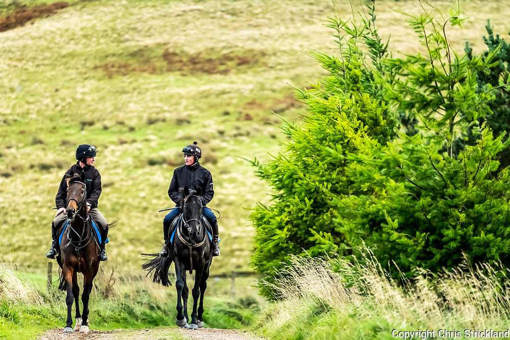 Camptown, Jedburgh, Scottish Borders, UK. 16th October 2018. National Hunt racehorse Scotswell, left, and stable mate Rhymers Stone, head home after being schooled over fences at the yard of Harriet Graham.