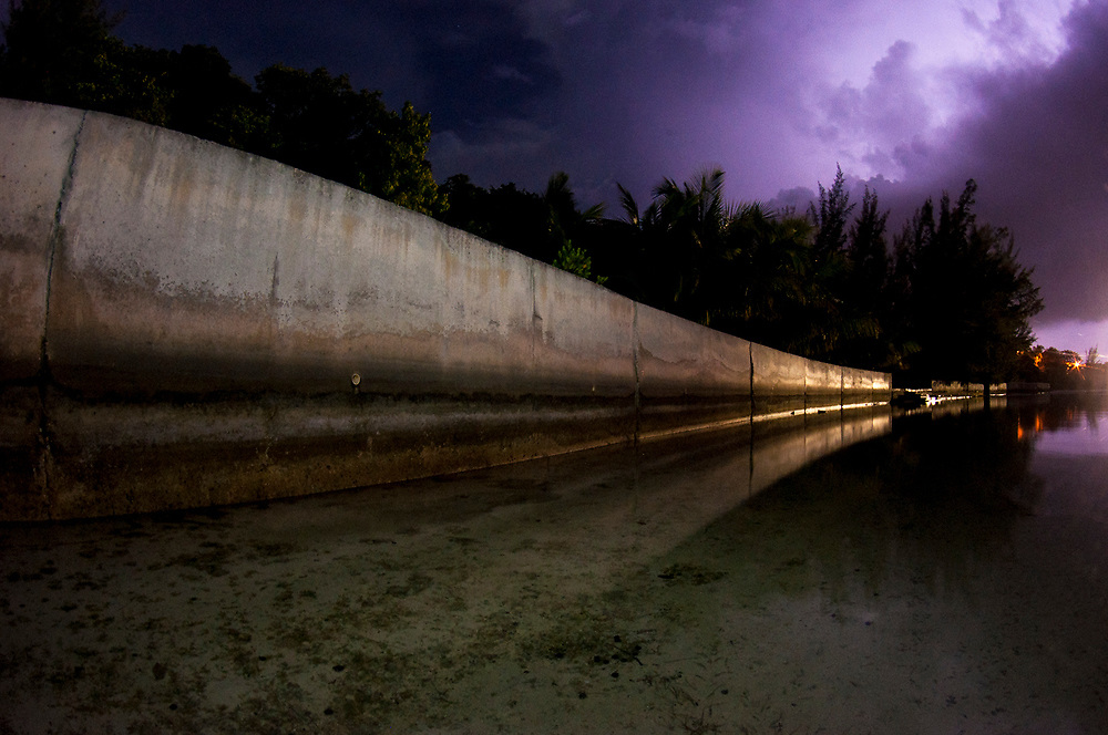 Mangroves replaced by walls have proven to be less effective at mitigating the effects of large storms like hurricanes.