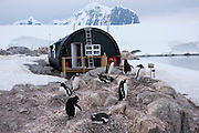 Port Lockroy, Antarctic Treaty Historic Site No. 61, British Base A. Home to a small Gentoo penguin colony. Antarctica.