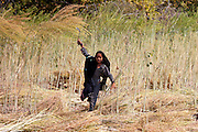 Indian girl agricultural worker at farm at Sawai Madhopur near Ranthambore in Rajasthan, Northern India