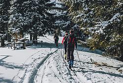 THEMENBILD - Skitourengeher in einem Waldstück, aufgenommen am 27. Februar 2020 in Kaprun, Oesterreich // Ski tourers in a forest, in Kaprun, Austria on 2020/02/27. EXPA Pictures © 2020, PhotoCredit: EXPA/Stefanie Oberhauser