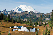 Mount Rainier reflects in one of the Tipsoo Lakes, adjacent to the highway at Chinook Pass in Mount Rainier National Park, on the Naches Peak Loop Trail.