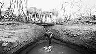 Joel Leshargole watering camels in Northern Kenya. Ngurunit, Kenya, MR#41