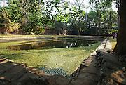 Cambodia, Angkor Thom, Royal Palace enclosure a pond