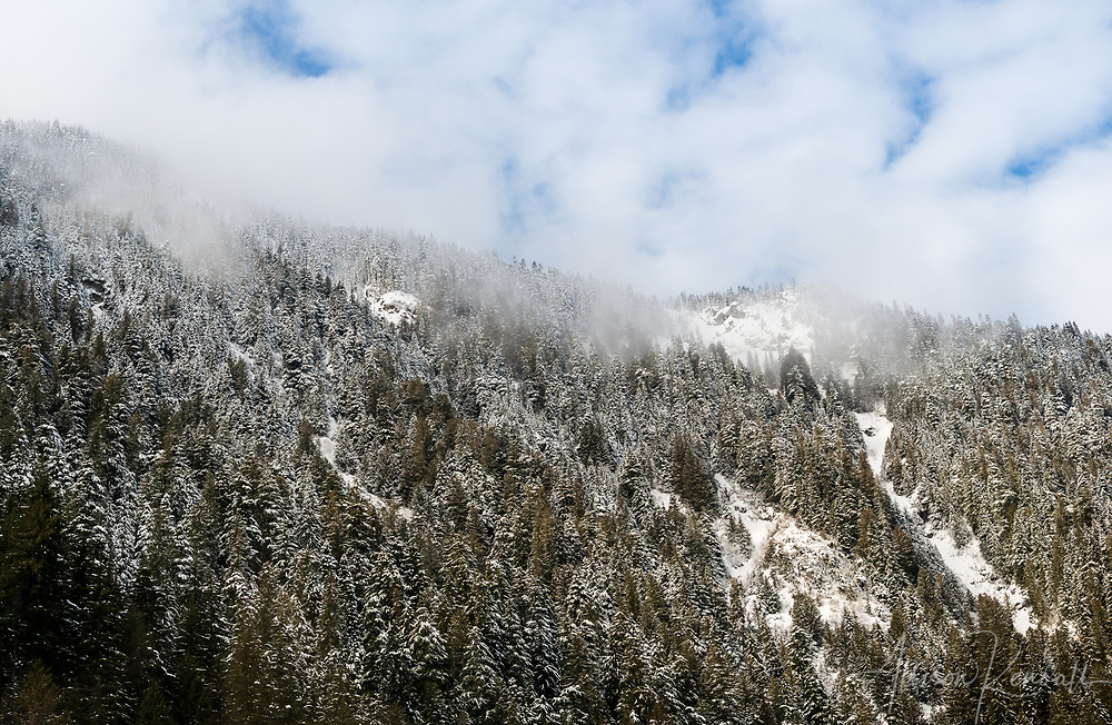 Misty winter scenery in the mountains and forest of interior Southern BC, Canada