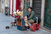 Busker playing a card based music box with chickens at Rua das Flores, from 1521, Ribeira, Porto, Portugal