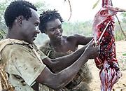 A Hadza hunter returns to the village with a his hunted prey. Photographed at Lake Eyasi, Tanzania