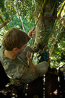 Photographer Tim Laman lowering equipment with a rope and pulley from the canopy platform used to photograph Wallace's Standardwing Bird of Paradise.