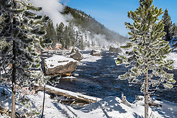 First sub-zero day of a Yellowstone Winter. A hot apring steams away in the morning chill along the Gibbon River.