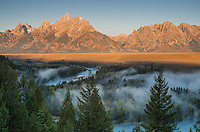 """The Grand Teton mountain range in Wyoming glows from the first light of the day. Scattered fog was moving in between the colorful fall foliage along the Snake River. This same viewpoint is where Ansel Adams took his iconic image, """"The Tetons and Snake River"""". Although 61 years of tree growth means the view of the river is not quite the same."""