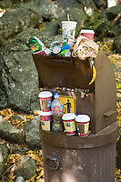 Trash overflowing garbage can in Yosemite National Park, Ca.