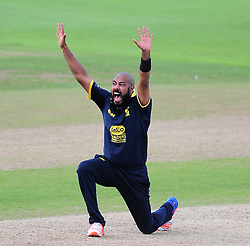 Jeetan Patel of Warwickshire  appeals for the wicket of Craig Overton - Mandatory by-line: Alex Davidson/JMP - 29/08/2016 - CRICKET - Edgbaston - Birmingham, United Kingdom - Warwickshire v Somerset - Royal London One Day Cup semi final