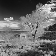 Mono Lake West Shore Old Homestead - Infrared Black & White