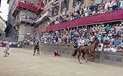 "Italy, Siena, the Palio: horses get rid of their Jockeys at the Curva del CasatoOn the basis of a detailed reconstruction of horse accidents which have happened on this race-track during the last 20 years of the Palio, we see that the greatest number of accidents have happened at San Martino (57% of the cases) in respect to ""Casato"" (37% of the cases.)<br /> <br /> But while at the curve at San Martino the accidents have happened both on the first lap (45%) as well as on the second lap (55%), at the ""Casato"" curve the accidents have happened mostly on the first lap (70%). At the shot of the mortaretto, the horses come out of the Entrone and line up at the starting line, known as the mossa. As soon as the last horse reaches the starting line the race begins and lasts for three rounds of the square (about 1 kilometre in total). The first horse to cross the finishing line is the winner, regardless of whether it is still mounted."