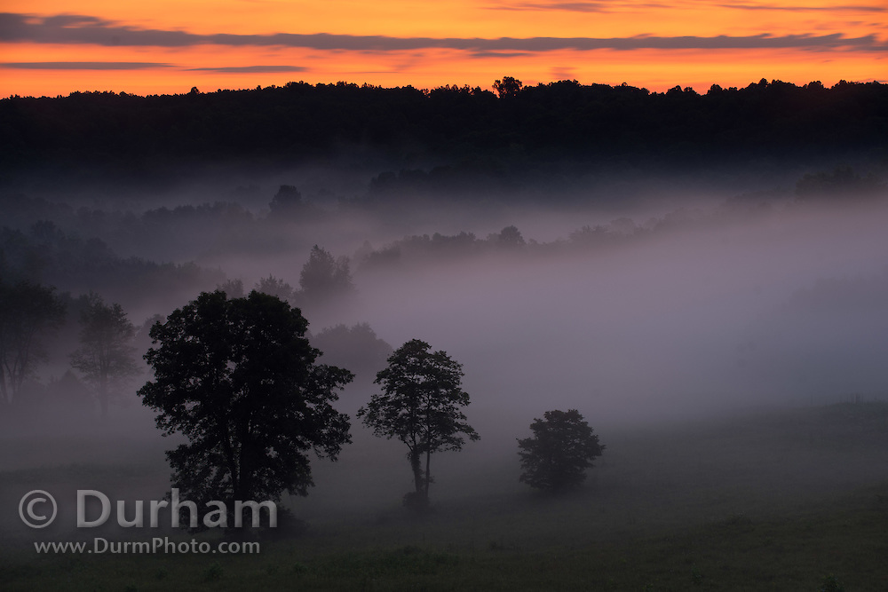 Sunrise in Mammoth Cave National Park, Kentucky. © Michael Durham.