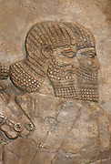 Detail from Assyrian wall panel, dated approximately 728 BC depicting the royal chariot. From the Central Palace in Nimrud.