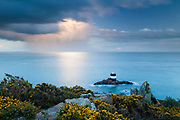 A dramatic storm cloud passes by a gorse-covered Noirmont Point, the site of a German Second World War Command Bunker. Jersey, Channel Islands.