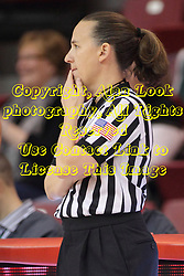 04 January 2015:  Referee Jamie Broderick during an NCAA MVC (Missouri Valley Conference) women's basketball game between the Southern Illinois Salukis and the Illinois Sate Redbirds at Redbird Arena in Normal IL