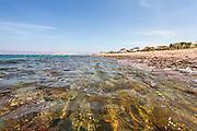 Red Sea, Aqaba, Jordan