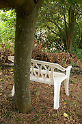 plastic two seater bench under a tree during spring season
