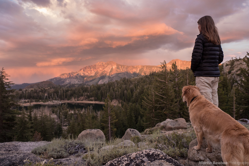 A woman and dog (golden retriever) watch the last light on Silver Peak, Toiyabe National Forest, California
