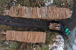 THEMENBILD - Holzfäller und schwere Holzbringungsmaschinen beseitigen die Sturmschäden der Unwetternacht von Montag 29. Oktober auf Dienstag 30. Oktober 2018, vom Windwurf betroffenen Waldgebiete im Ortsteil Lana während der Aufräumarbeiten am Montag, 11. März 2019 in Kals am Großglockner, Österreich // Lumberjacks and heavy wood harvesting machines eliminate the damage from the storm on Monday 29th October on Tuesday 30th October, windfall affected forest during the cleanup in the district Lana on Monday, March 11, 2019 in Kals am Grossglockner, Austria. EXPA Pictures © 2019, PhotoCredit: EXPA/ Johann Groder