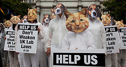 © Licensed to London News Pictures. 06/08/2011. London, UK. People dressed in Cat and Dog masks lined up at Marble Arch, London today (06/08/2011) to plead for animal protection in laboratories. PETA members are calling on Government not to reduce UK standards of animal protection to the lowest EU level. The Home Office is currently holding a public consultation on options for transposing the directive. Photo credit: Bettina Strenske/LNP