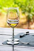 Domaine Vaquer. Domaine de Nidoleres. Roussillon. France. Europe. Wine glass.
