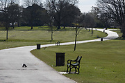 As the second week of the UK governments Coronavirus lockdown ends on a fine Spring weekend, and 24hrs after it was reported that 3,000 Londoners had been counted in Brockwell Park, Herne Hill, resulting in the closure of this significant public green space by Lambeth council, an empty path and grass in the park See a similar view with many people 2 days before in Getty image #1209106121, on 5th April 2020, in London, England.