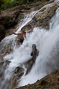 Fiji, waterfall