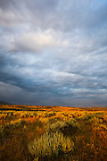 """Dramatic clouds over the sagebrush plains: sunrise on the Blacktail Deer Plateau, northern Yellowstone National Park, Wyoming. This mage can be licensed via Millennium Images. Contact me for more details, or email mail@milim.com For prints, contact me, or click """"add to cart"""" to some standard print options."""