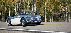 025- 1956 Austin- Healey 100M
