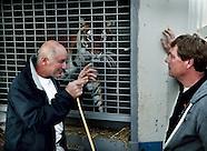 Circusdieren naar Spanje Stichting AAP