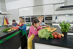 Students cutting vegetables in home economics class, Bavaria, Germany