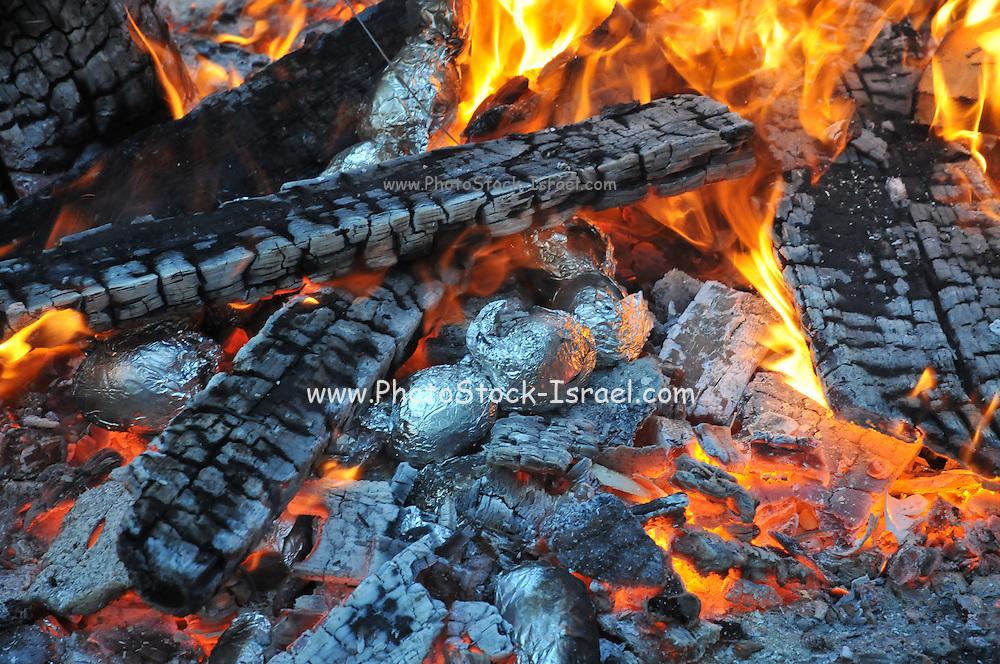 Close up of a burning bonfire
