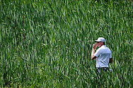 Jun 30, 2017; Potomac, MD, USA; Nick Watney looks for Russell Henley's ball in the rough on the 10th hole during the second round of the Quicken Loans National golf tournament at TPC Potomac at Avenel Farm. Mandatory Credit: Peter Casey-USA TODAY Sports